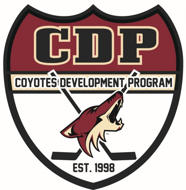 Consider, that coyotes amateur hockey association